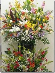 この花2011.2.10